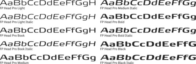 Fp Head Pro Book