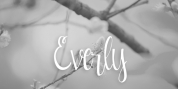 Everly font download