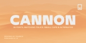 Cannon font download