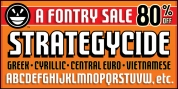 FTY Strategycide font download