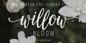 Willow Bloom font download