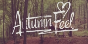 Autumn Feel font download