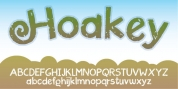Hoakey font download