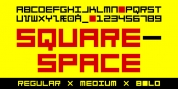 TPG SquareSpace font download