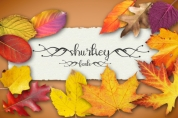 Shurtiey font download