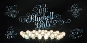 Bluebell font download