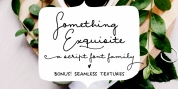 Something Exquisite font download
