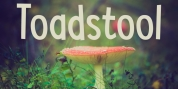 Toadstool font download