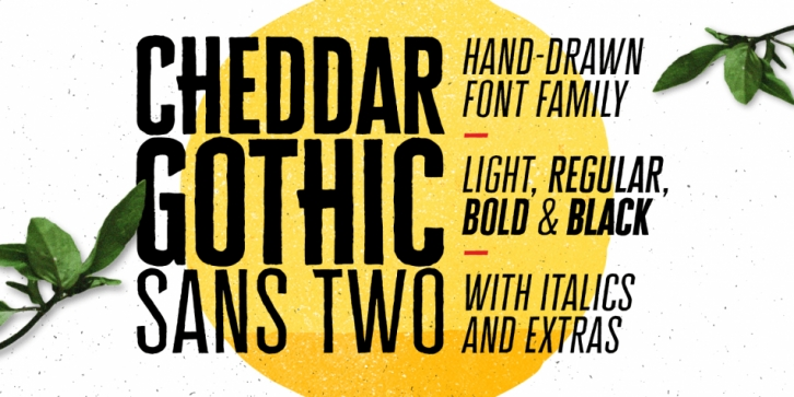 Cheddar Gothic Sans Two font preview