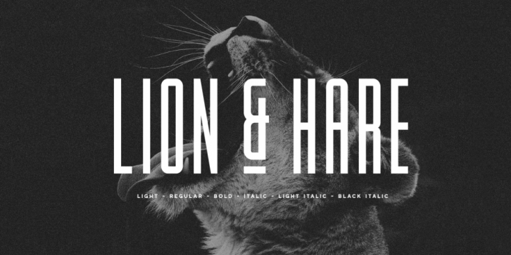 Lion & Hare font preview