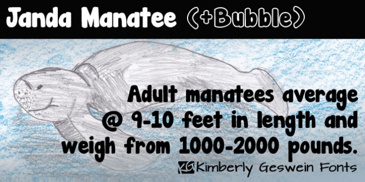 Janda Manatee font preview