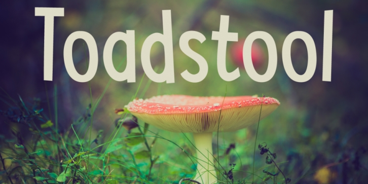 Toadstool font preview